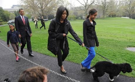 První pes USA  je 'tak trochu bláznivý'